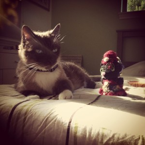 Steampunk crocheted kitty meets live kitty
